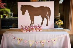 Adrianna\'s Pony Party
