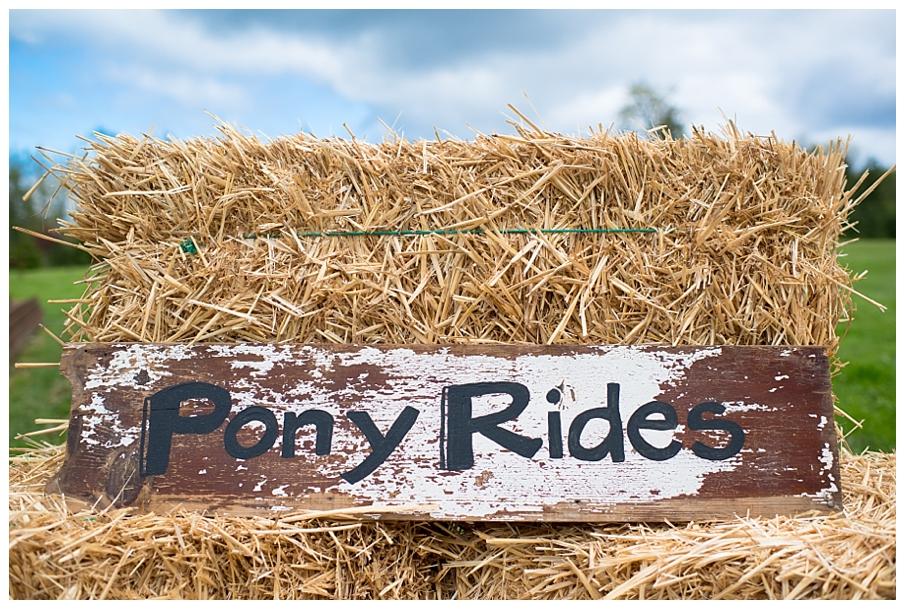 pony party 16