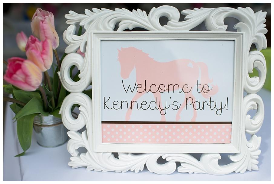 pony party 6