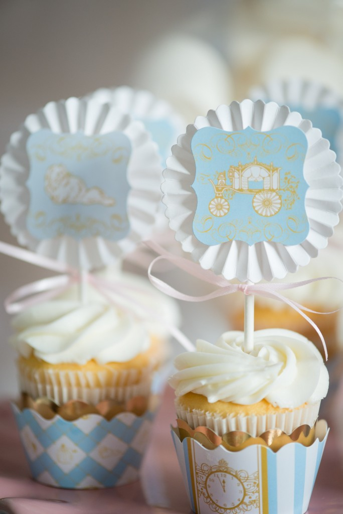 A Dream Come True Cinderella Birthday Party Hoopla