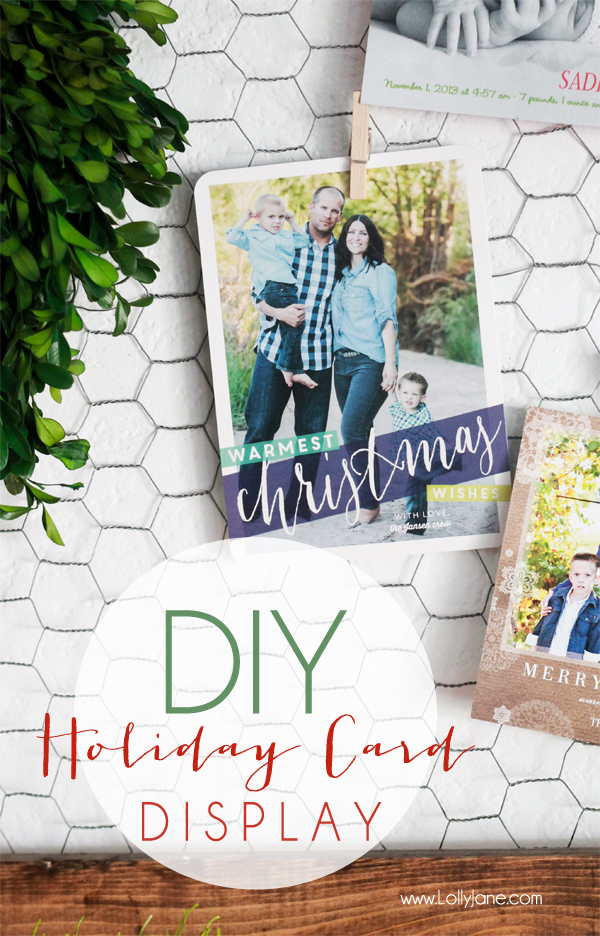 diy-chicken-wire-holiday-card-display